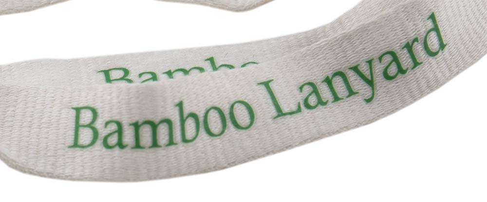 bamboo-2.jpg