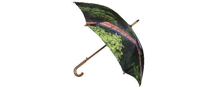 umbrella-full-color-photo-front-2.png